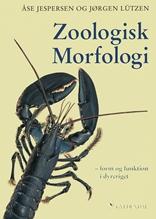 Zoologisk morfologi