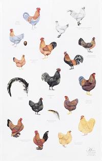 Viskestykke Høns