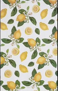 Viskestykke Citron