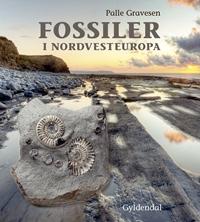 Fossiler i Nordvesteuropa