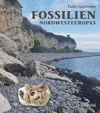 Fossilien Nordwesteuropas
