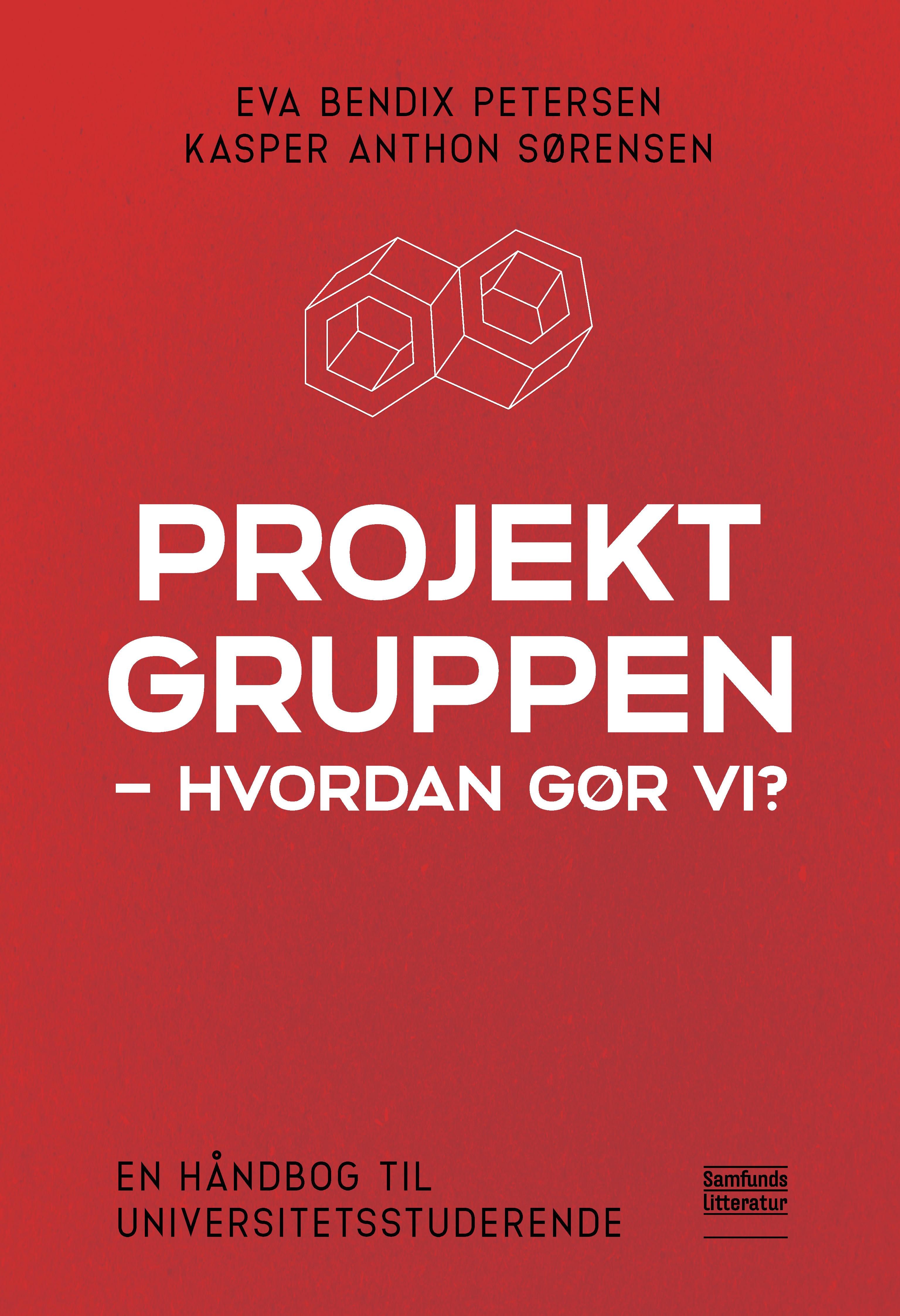 Projektgruppen - hvordan gør vi?